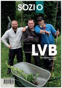 LVB - Licht Verstandelijk Beperkt