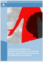 Gendersensitiviteit in de Nederlandse aanpak van huiselijk geweld