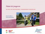 Náást de jongeren - De staat van professioneel jongerenwerk in Nederland